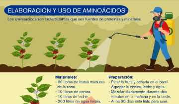 Proyecto Progresa Elaboración Aminoacidos