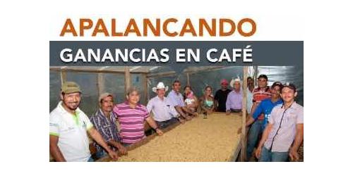 Historia de éxito: apalancando ganancias en café